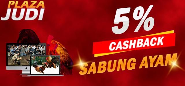 640x299-sabung-ayam-plazajudi-banner